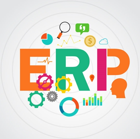 erp fig 1